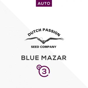 Blue Auto Mazar