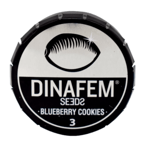 DINAFEM BLUEBERRY COOKIES