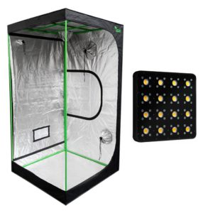 Pack LED Indoor 100×100 – 1 Apollo Evolution Pro 16