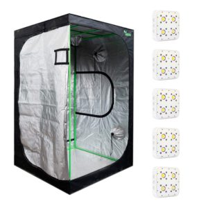 Pack LED Indoor 120×120 – 5 Apollo Evolution 4