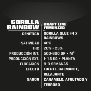 BSF – Gorilla Rainbow